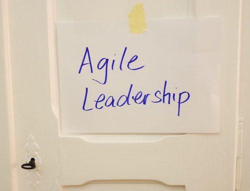 Interview mit Dorothee Wiebe zum Thema >>Agiler Kulturwandel in Unternehmen – Teil II
